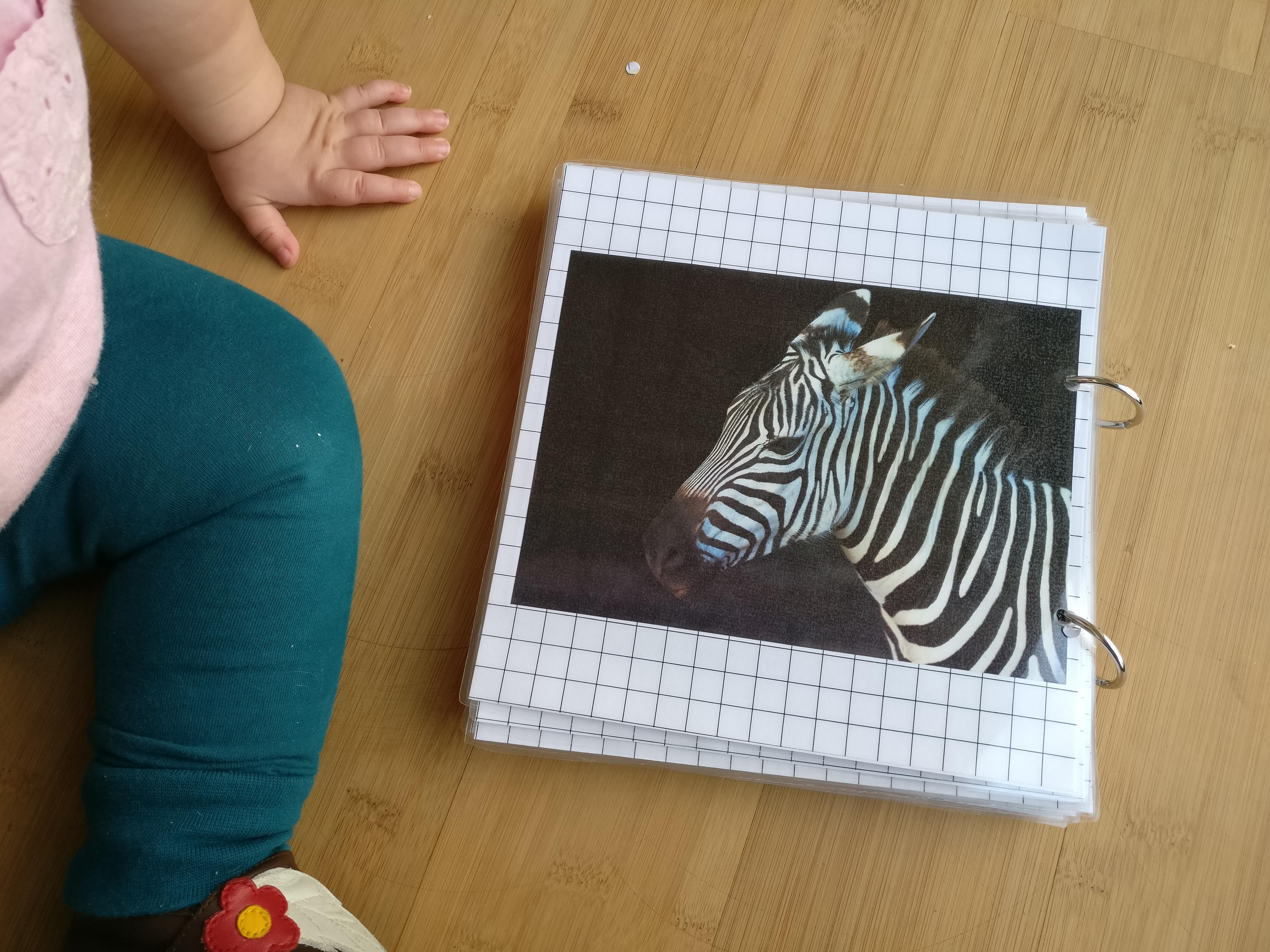 dierenboekje maken